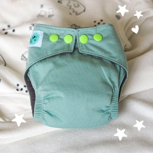 All in one Newborn Cloth Nappies – 0-4 Months – Powder Mint
